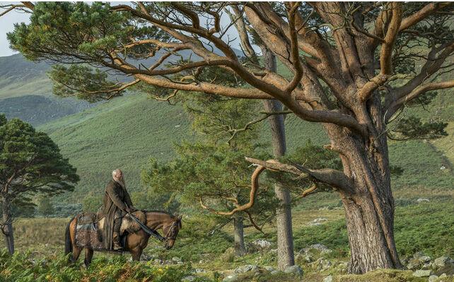Ragnar viendo el arbol donde planea suicidarse